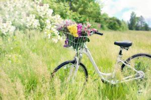 Frühling Sonne Fahrrad