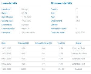 ViaInvest Kreditdetail